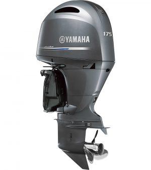 Yamaha F175AETX
